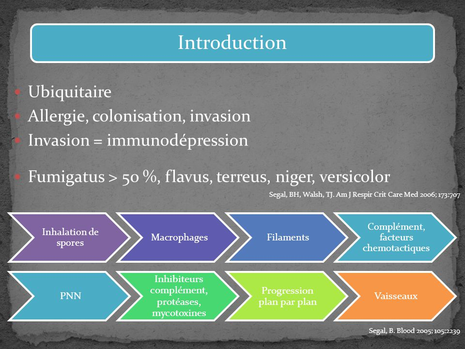 Introduction Ubiquitaire Allergie, colonisation, invasion