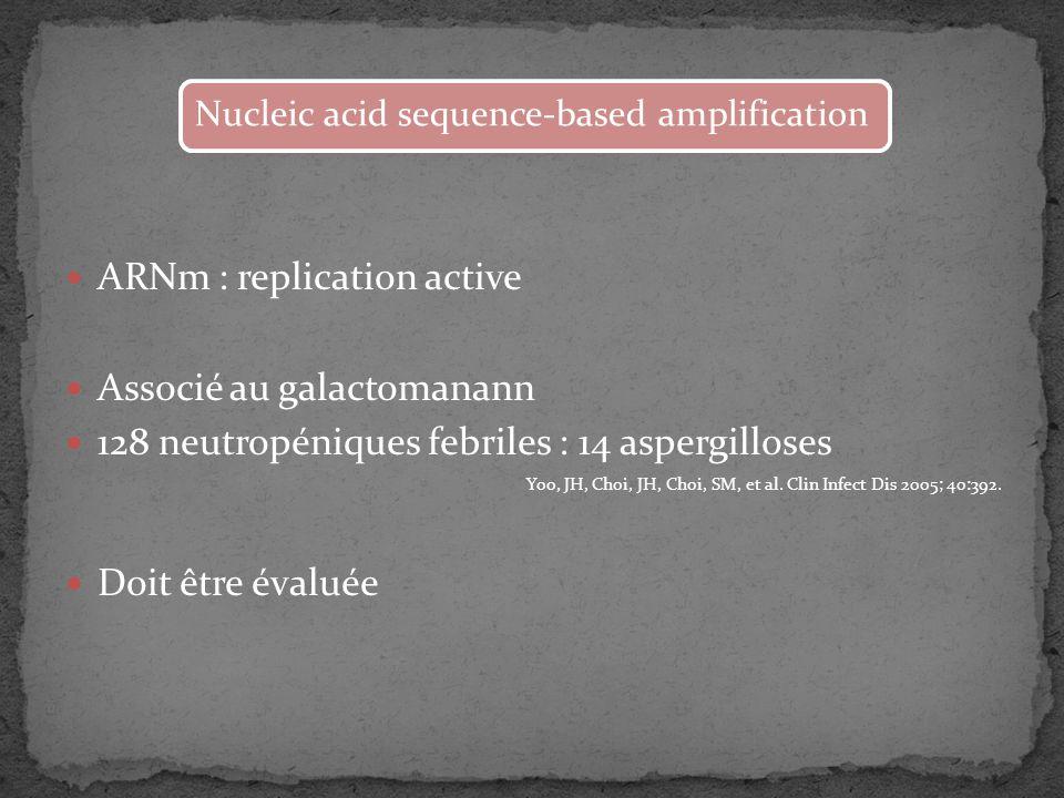 ARNm : replication active Associé au galactomanann