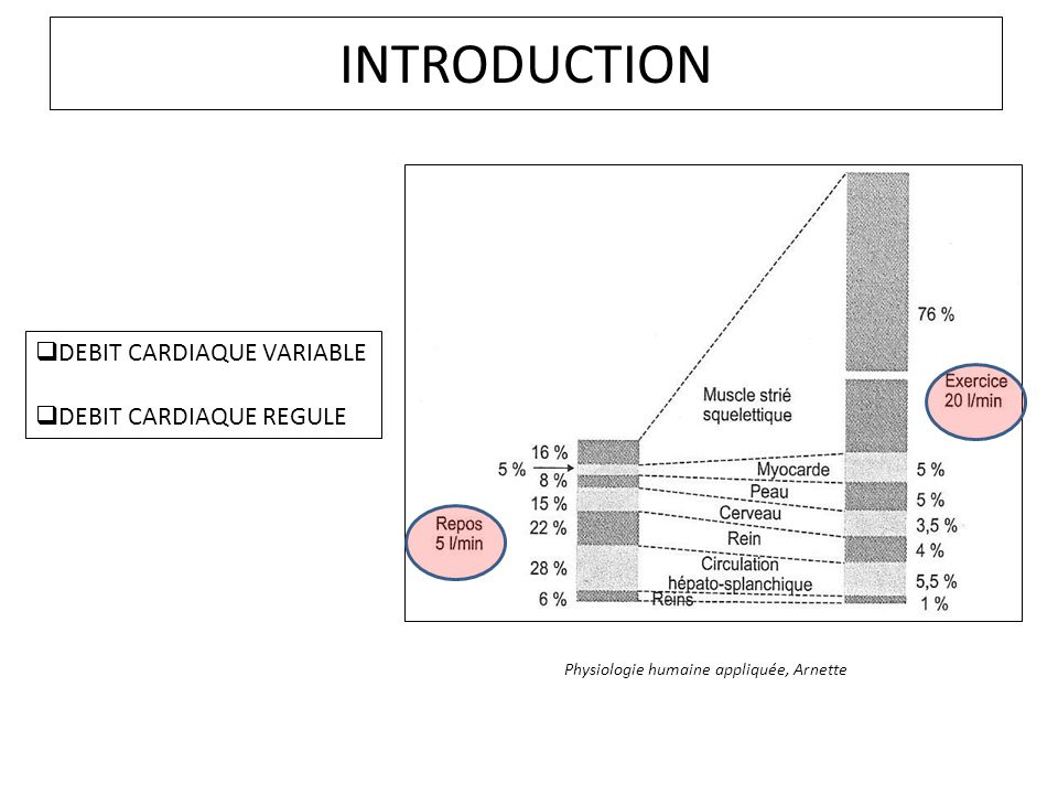 INTRODUCTION DEBIT CARDIAQUE VARIABLE DEBIT CARDIAQUE REGULE