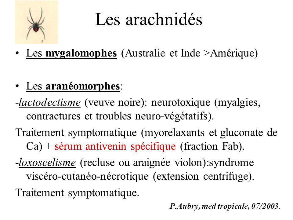 Les arachnidés Les mygalomophes (Australie et Inde >Amérique)