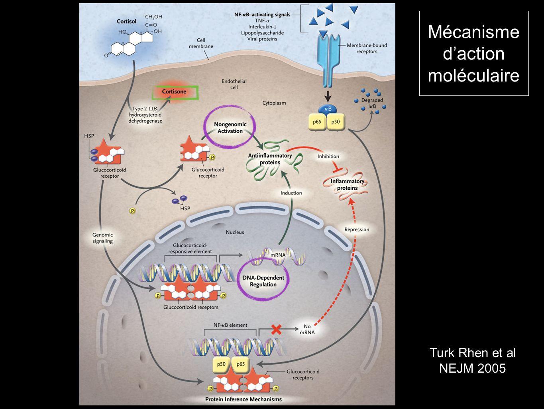 Mécanisme d'action moléculaire