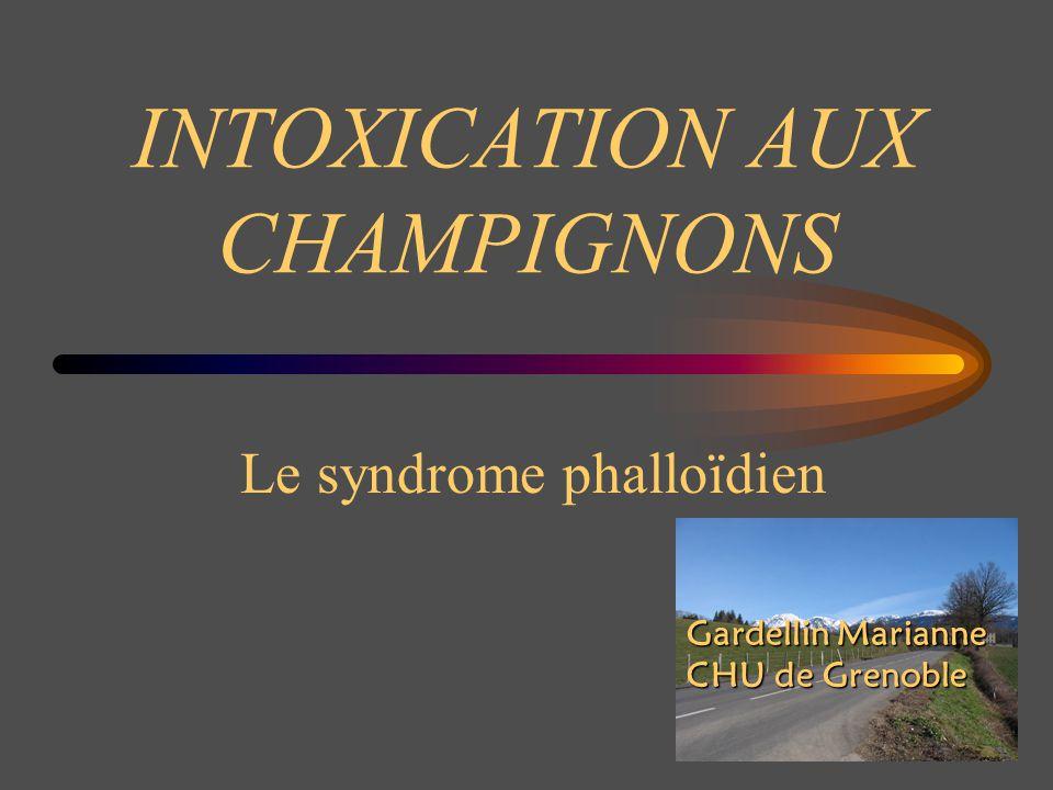 INTOXICATION AUX CHAMPIGNONS