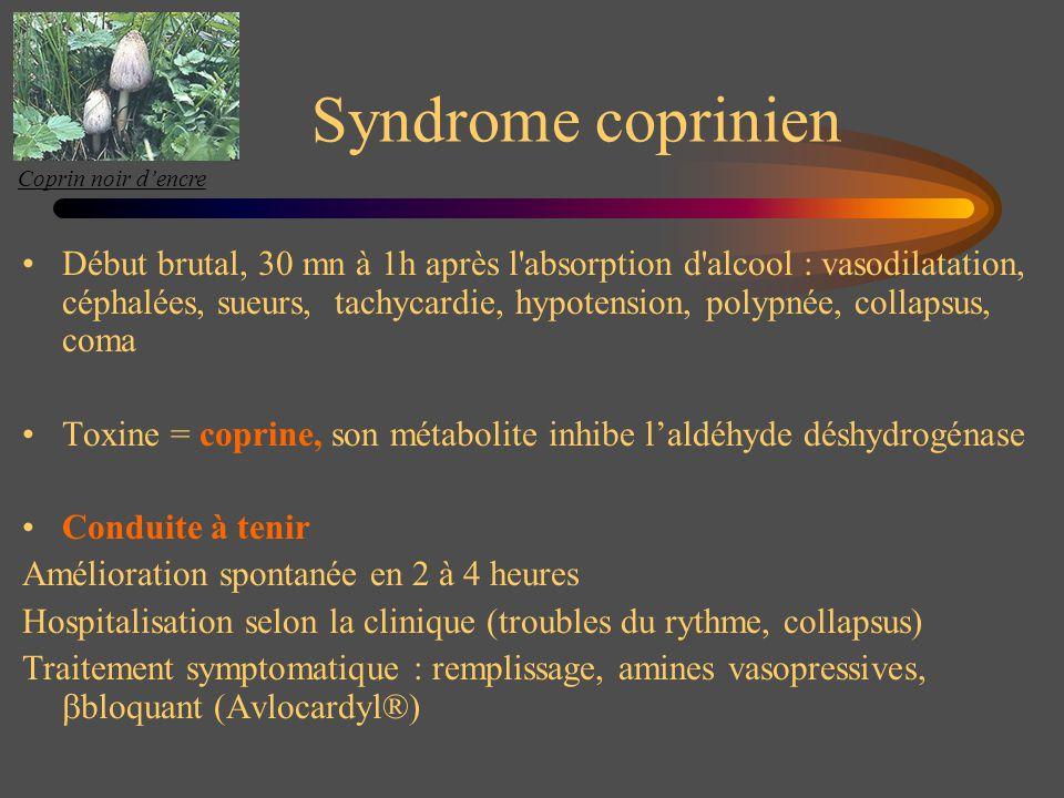 Coprin noir d'encre Syndrome coprinien.