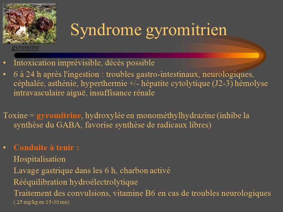 Syndrome gyromitrien Intoxication imprévisible, décès possible