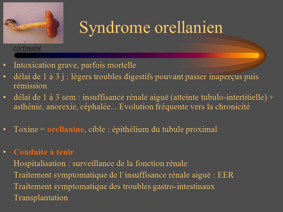 Syndrome orellanien Intoxication grave, parfois mortelle