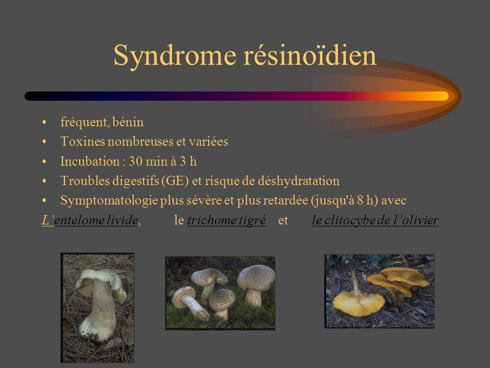 Syndrome résinoïdien fréquent, bénin Toxines nombreuses et variées