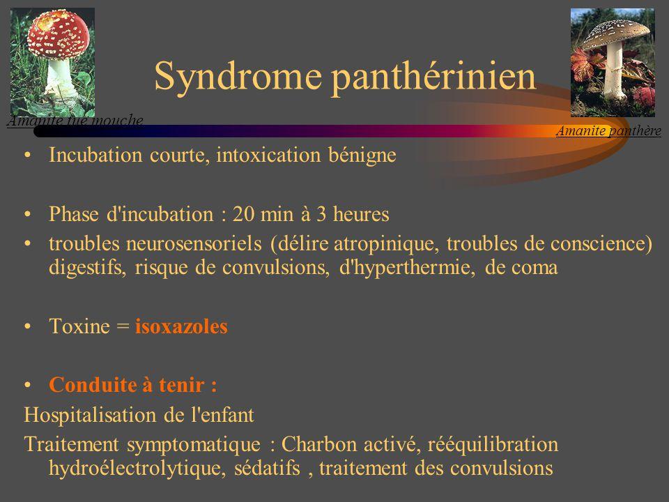 Syndrome panthérinien