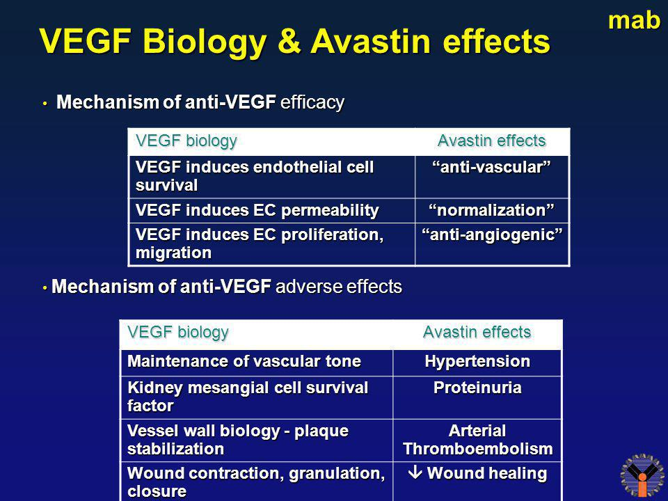 VEGF Biology & Avastin effects Arterial Thromboembolism