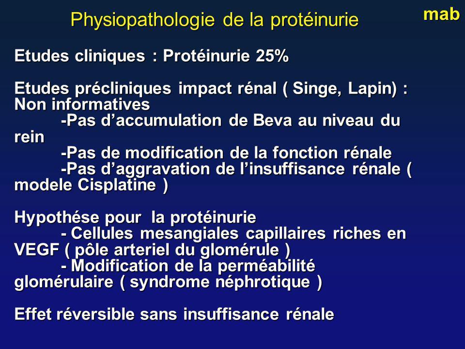 Physiopathologie de la protéinurie