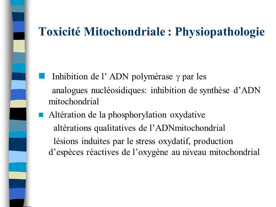 Toxicité Mitochondriale : Physiopathologie