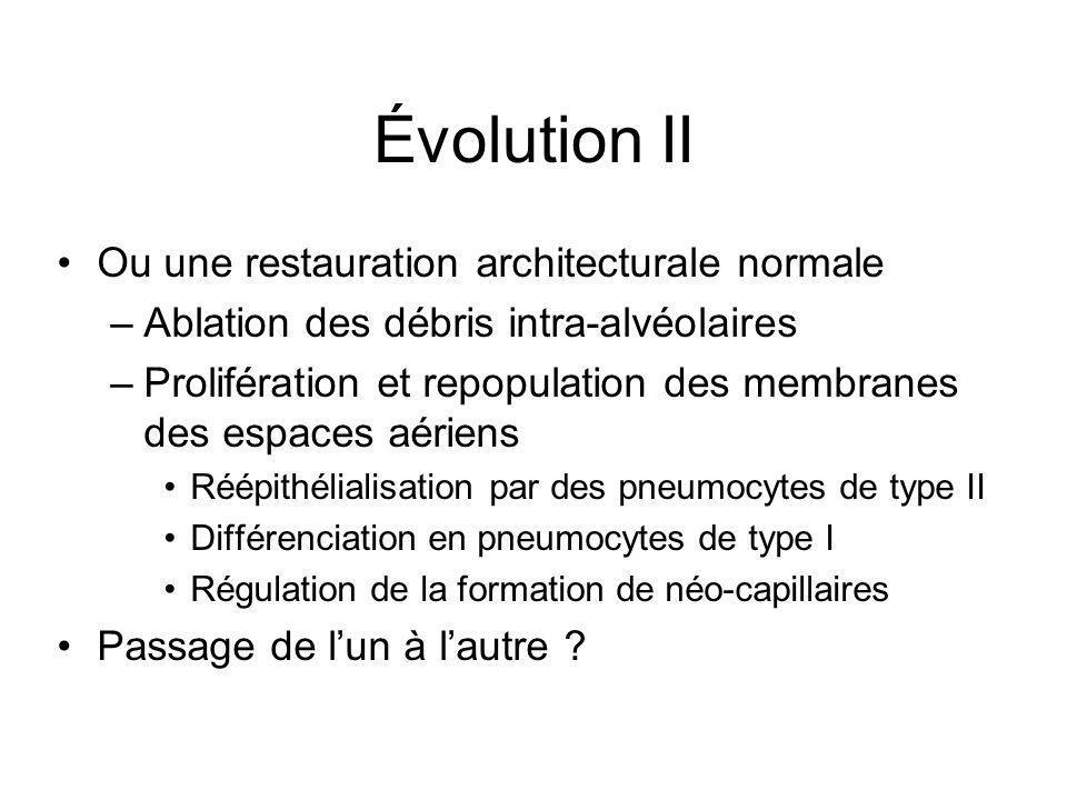 Évolution II Ou une restauration architecturale normale