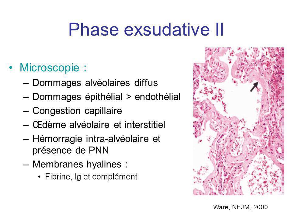 Phase exsudative II Microscopie : Dommages alvéolaires diffus