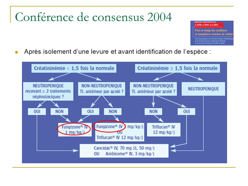 Conférence de consensus 2004