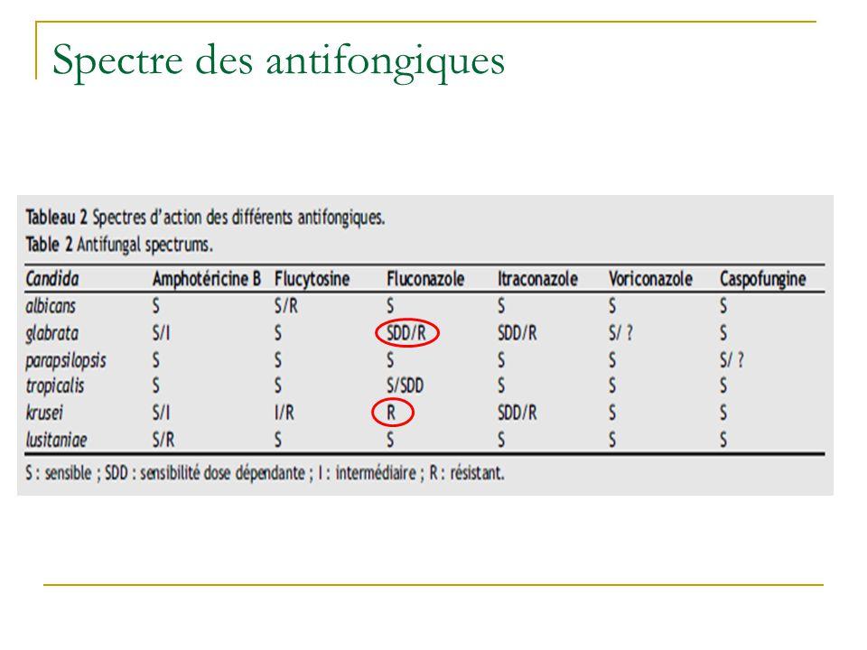 Spectre des antifongiques