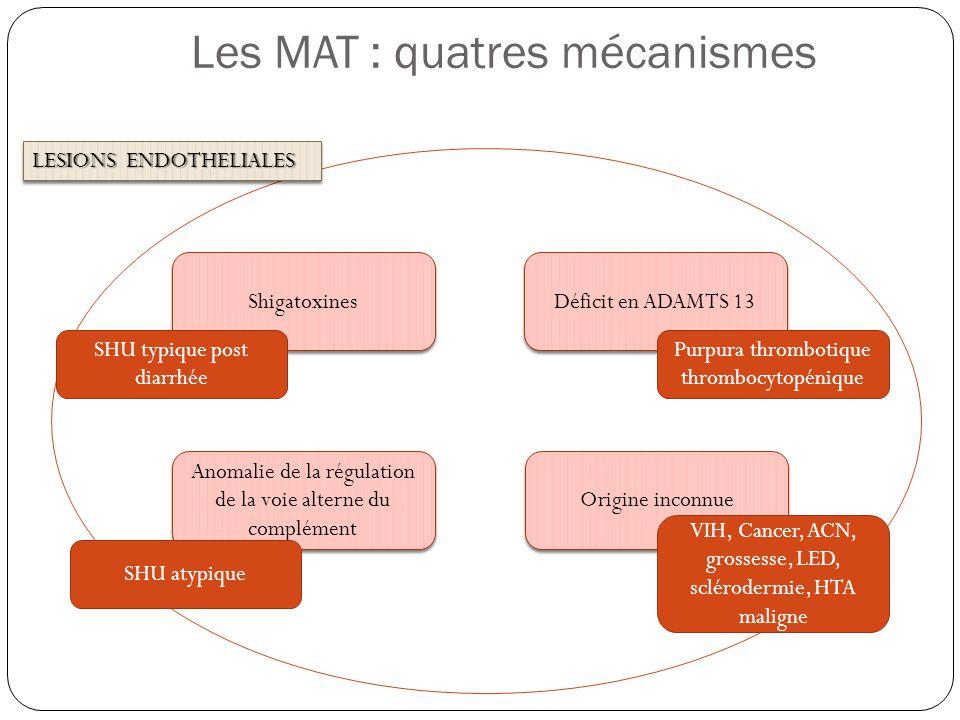 Les MAT : quatres mécanismes