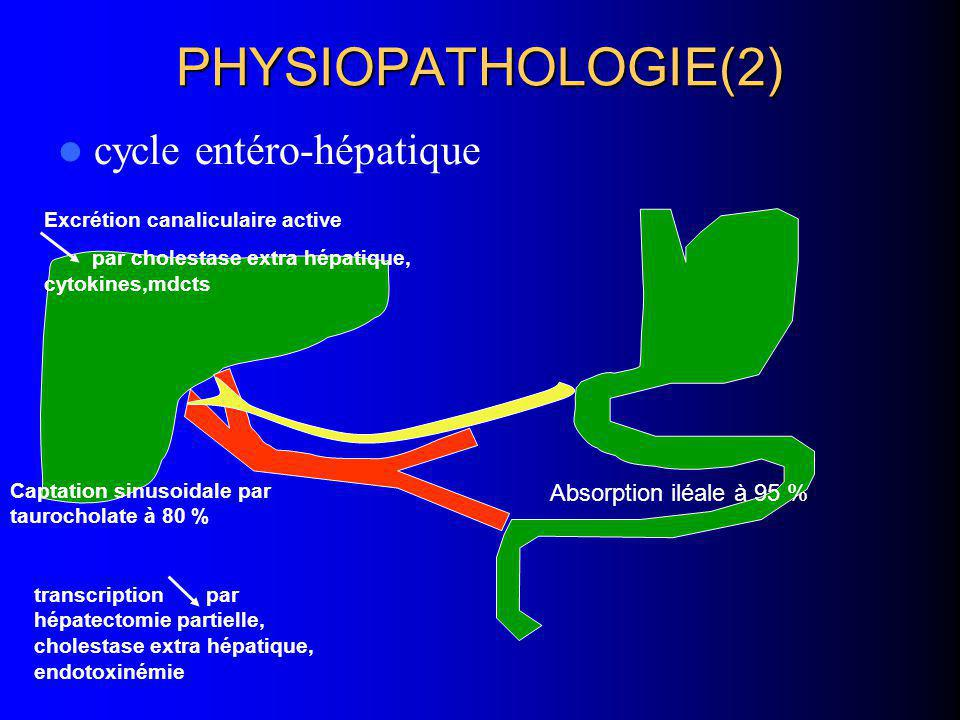 PHYSIOPATHOLOGIE(2) cycle entéro-hépatique Absorption iléale à 95 %