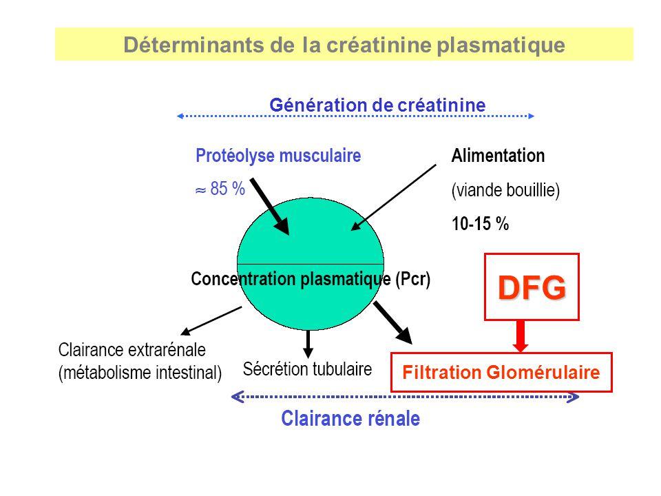 DFG Déterminants de la créatinine plasmatique Génération de créatinine