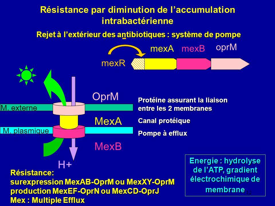 Résistance par diminution de l'accumulation intrabactérienne