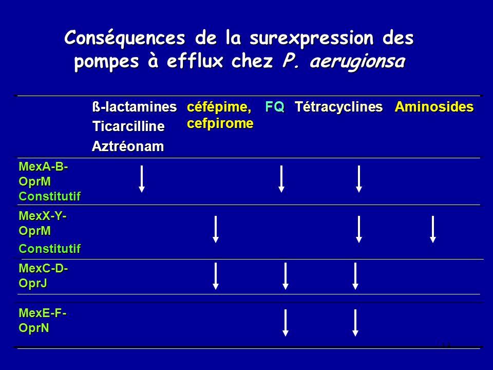 Conséquences de la surexpression des pompes à efflux chez P. aerugionsa