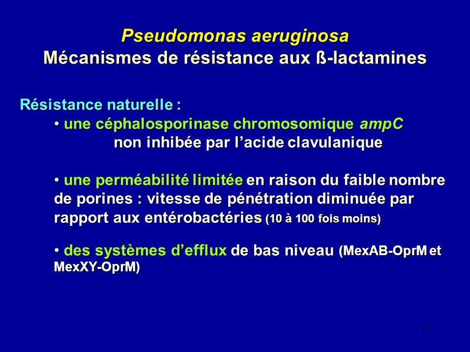 Pseudomonas aeruginosa Mécanismes de résistance aux ß-lactamines