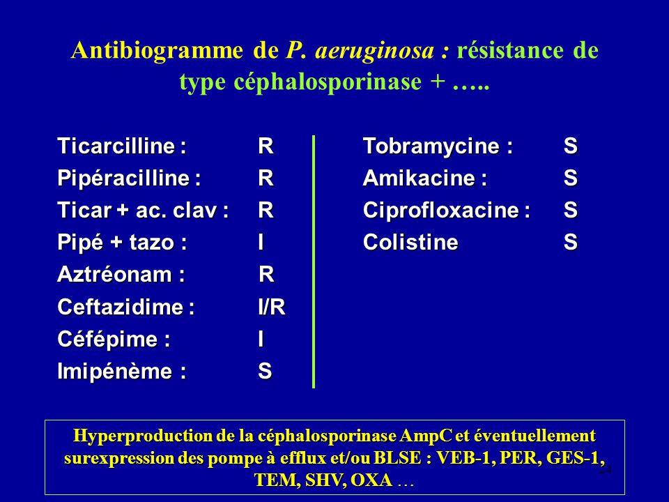 Antibiogramme de P. aeruginosa : résistance de type céphalosporinase + …..