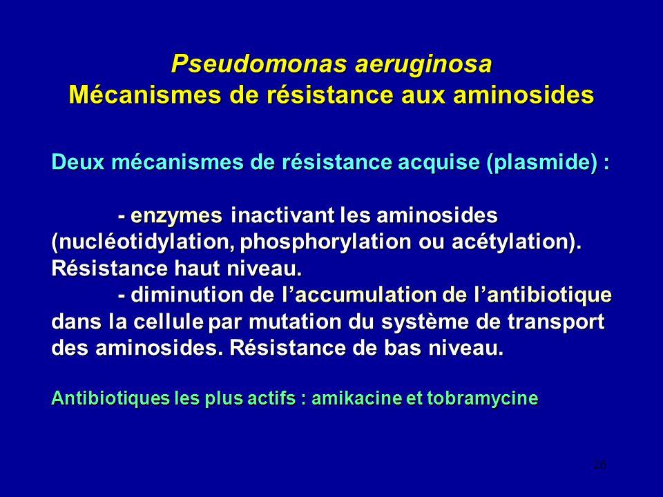 Pseudomonas aeruginosa Mécanismes de résistance aux aminosides