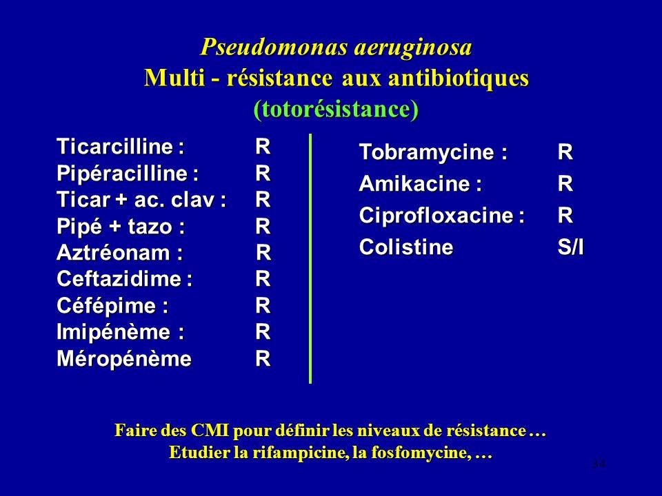 Pseudomonas aeruginosa Multi - résistance aux antibiotiques (totorésistance)