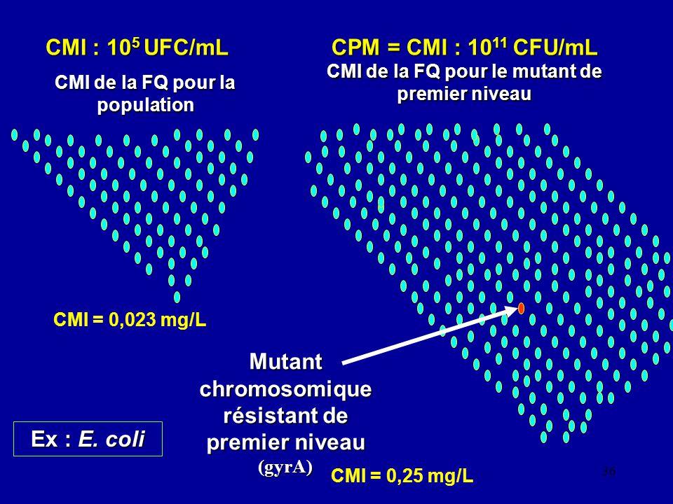 CPM = CMI : 1011 CFU/mL CMI de la FQ pour le mutant de premier niveau