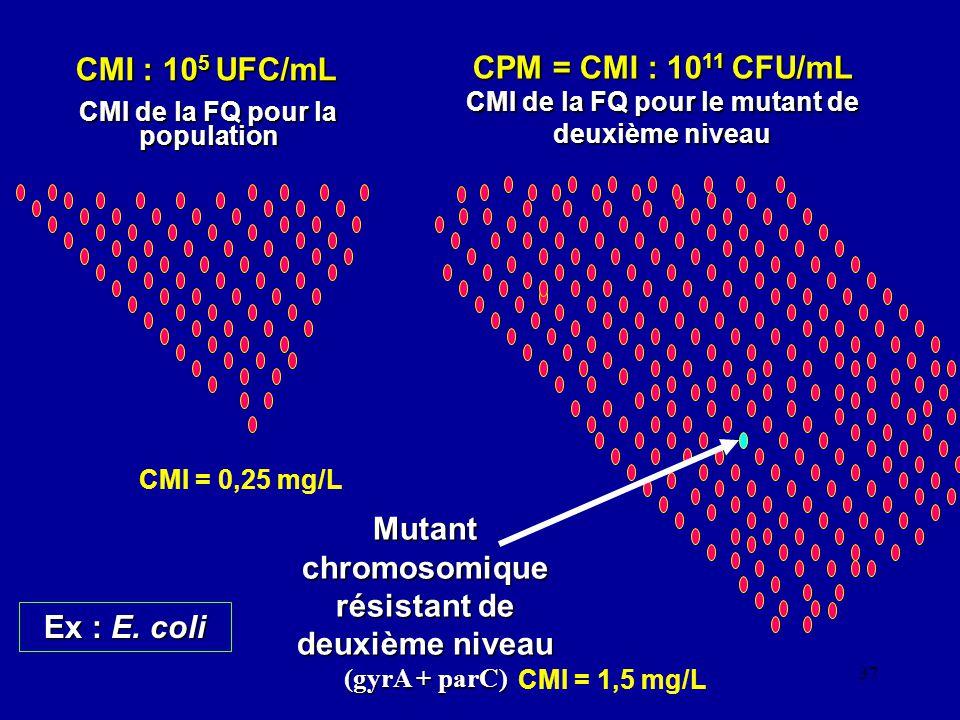 CPM = CMI : 1011 CFU/mL CMI de la FQ pour le mutant de deuxième niveau