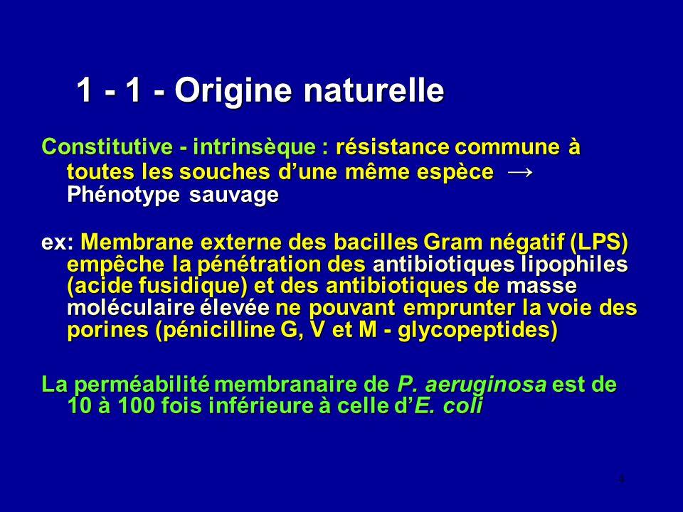 1 - 1 - Origine naturelle Constitutive - intrinsèque : résistance commune à toutes les souches d'une même espèce → Phénotype sauvage.