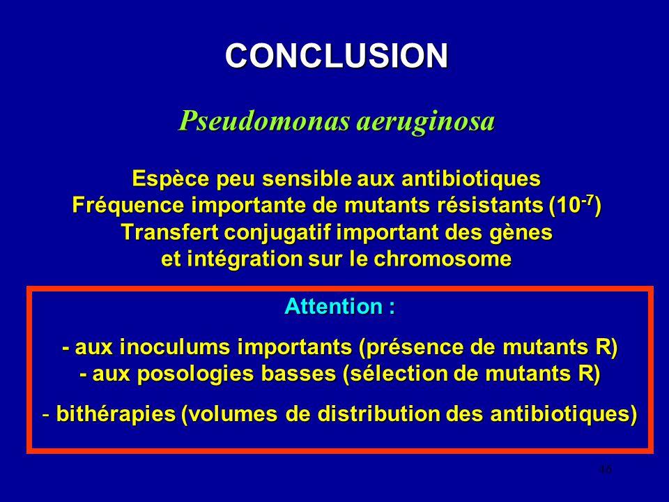bithérapies (volumes de distribution des antibiotiques)