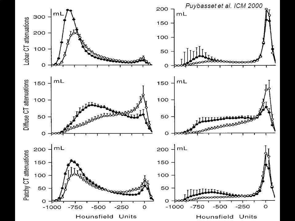 Puybasset et al. ICM 2000