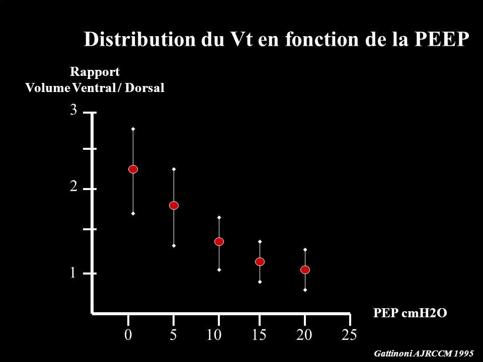 Volume Ventral / Dorsal