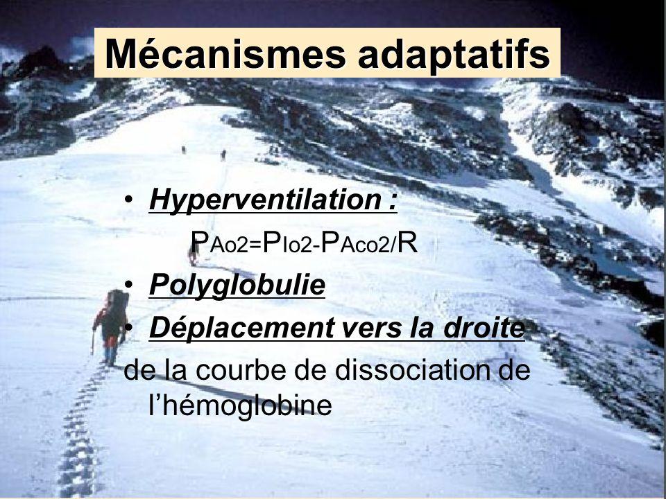 Mécanismes adaptatifs