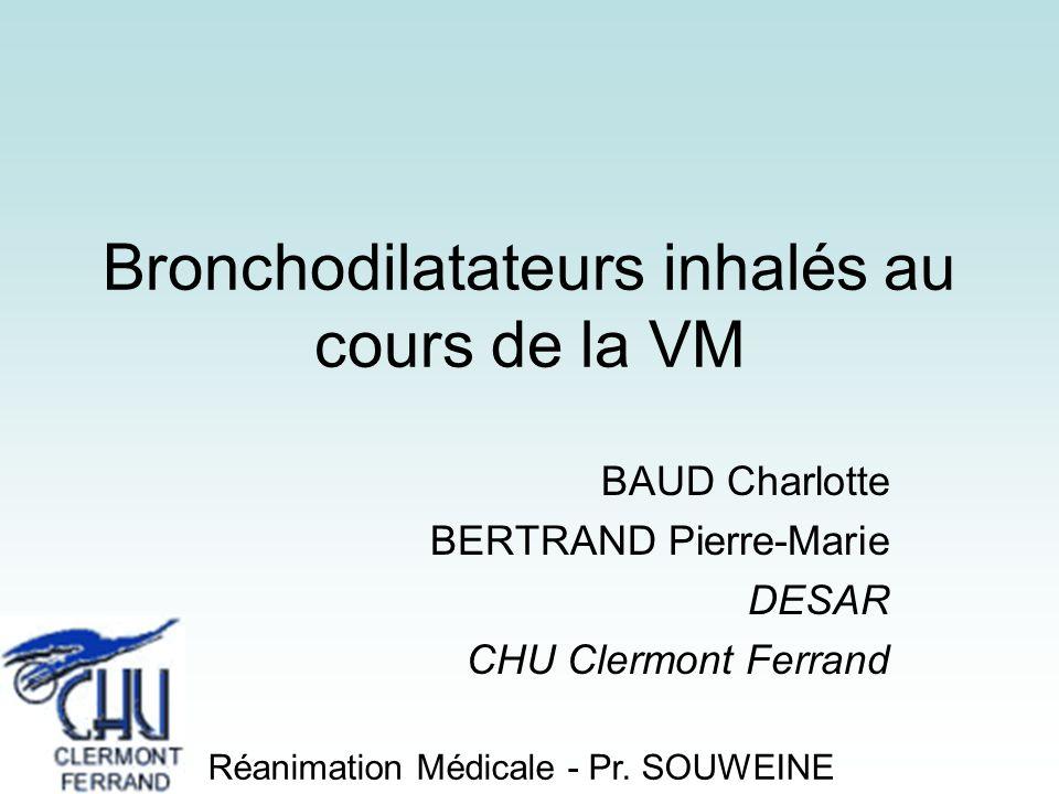 Bronchodilatateurs inhalés au cours de la VM