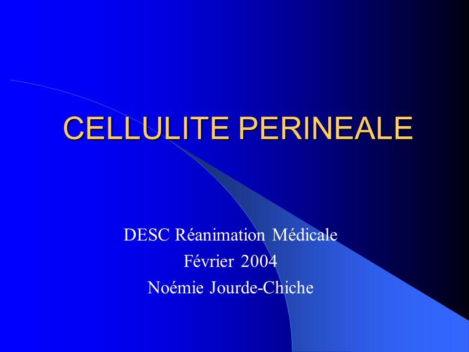 DESC Réanimation Médicale Février 2004 Noémie Jourde-Chiche
