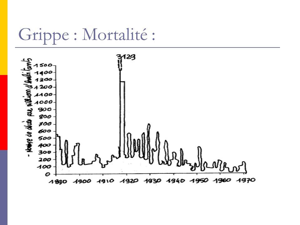 Grippe : Mortalité :