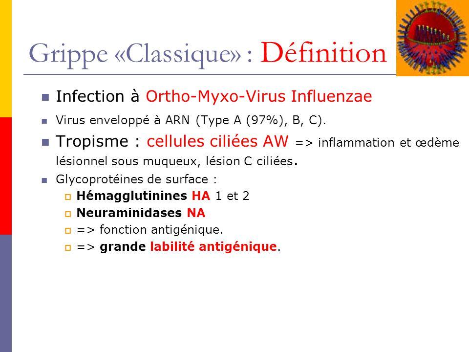 Grippe «Classique» : Définition
