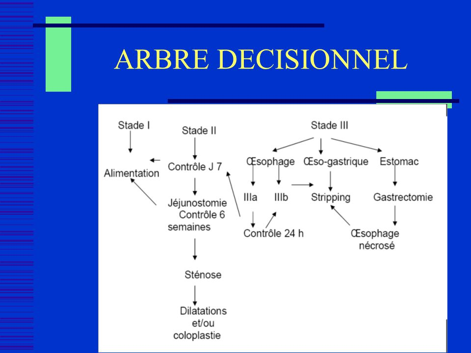 ARBRE DECISIONNEL