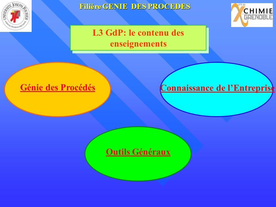 L3 GdP: le contenu des enseignements