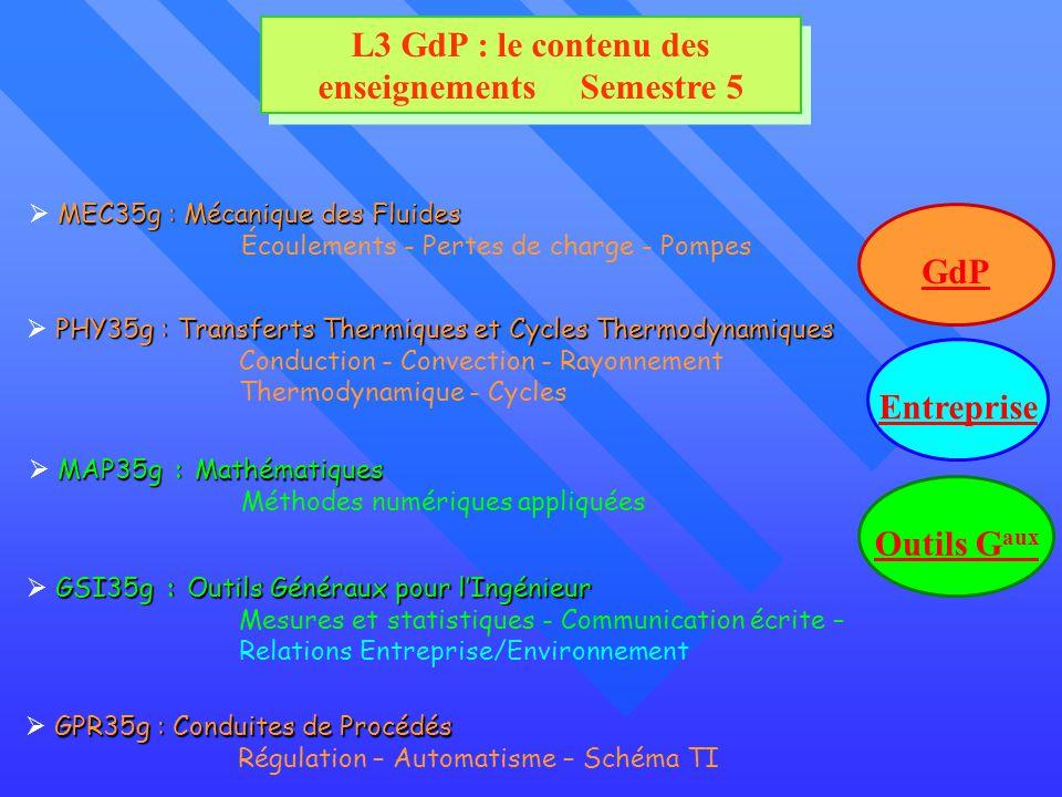 L3 GdP : le contenu des enseignements Semestre 5