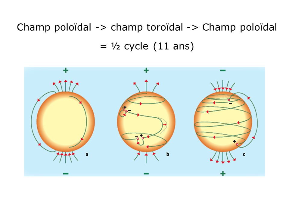 Champ poloïdal -> champ toroïdal -> Champ poloïdal = ½ cycle (11 ans)