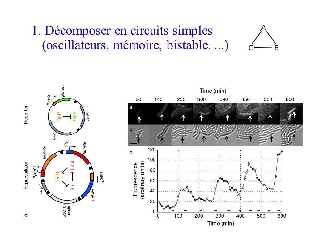 1. Décomposer en circuits simples (oscillateurs, mémoire, bistable, ...)