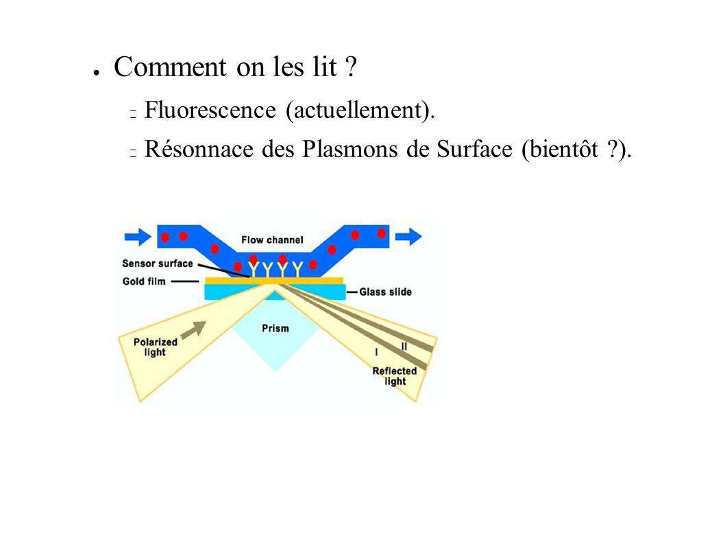 Comment on les lit Fluorescence (actuellement).