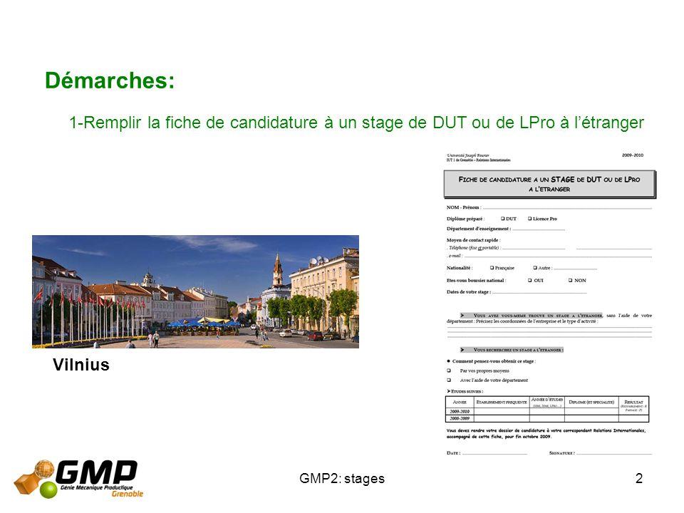 Démarches: 1-Remplir la fiche de candidature à un stage de DUT ou de LPro à l'étranger.