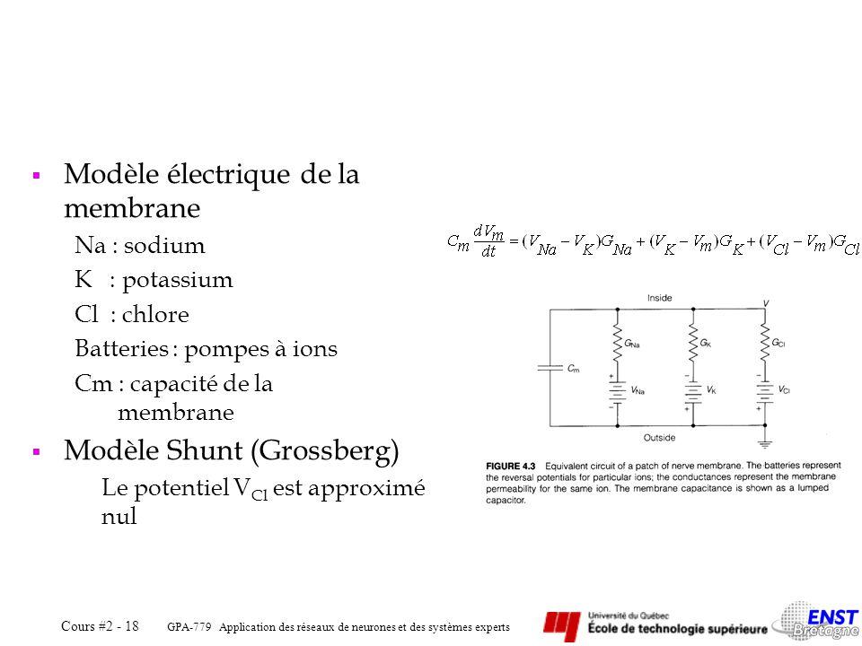 Modèle électrique de la membrane