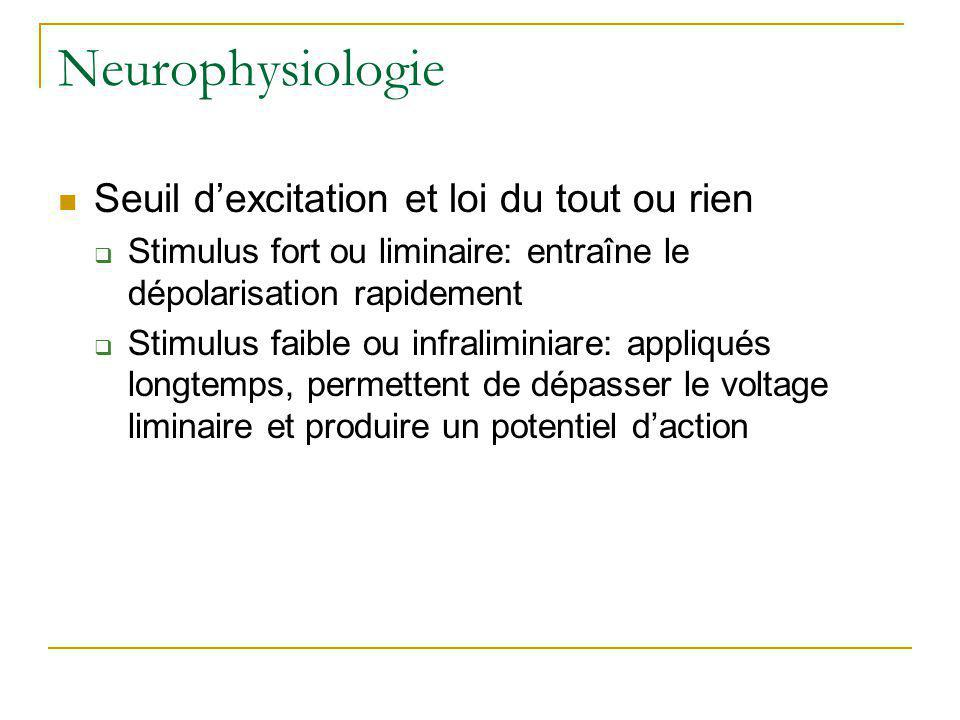 Neurophysiologie Seuil d'excitation et loi du tout ou rien