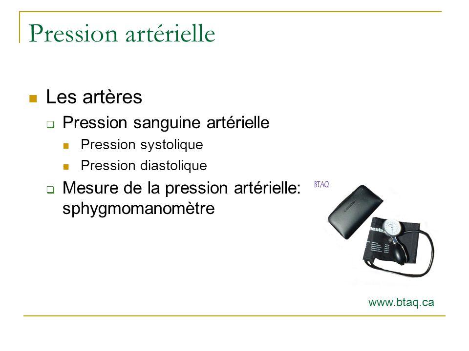 Pression artérielle Les artères Pression sanguine artérielle