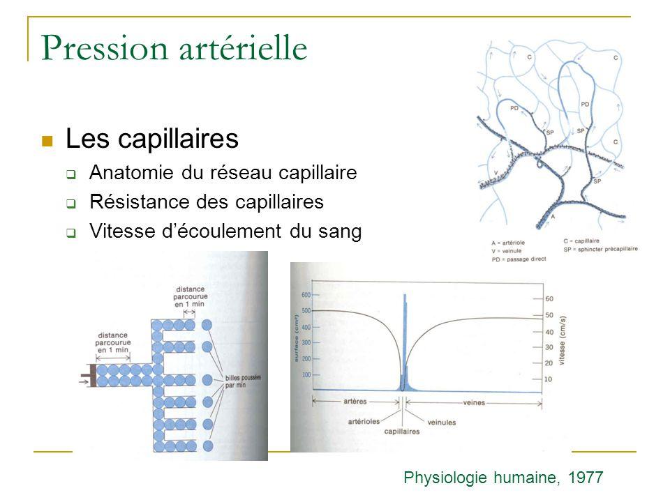 Pression artérielle Les capillaires Anatomie du réseau capillaire