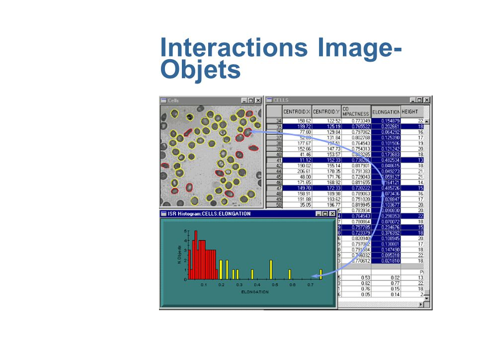 Interactions Image-Objets